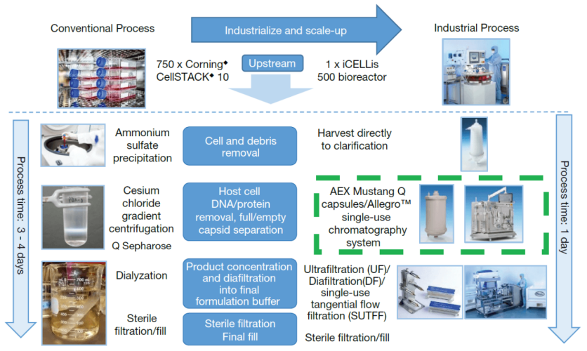Industrialize and scale-up adenovirus purification