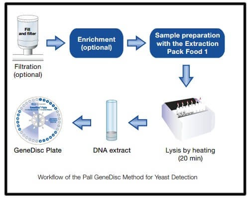 wine-quality-control-microbial-detection-gd-method